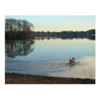 Un día precioso en el lago postales