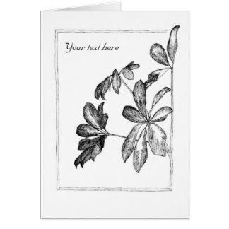 Un dibujo del Schefflera del houseplant Tarjeta De Felicitación