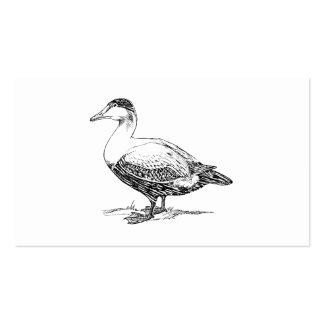 Un dibujo más viejo del pájaro del pato plantilla de tarjeta de negocio