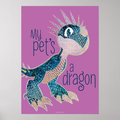 Un dragón de mi mascota posters