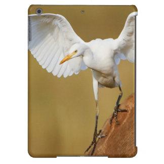 Un Egret de ganado (Bubulcus Ibis) desciende Funda Para iPad Air