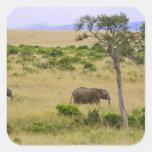 Un elefante africano que pasta en los campos de pegatinas cuadradas
