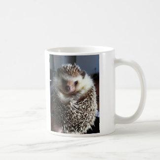 Un erizo lindo tazas de café