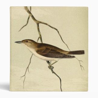 """Un especie de ave de Tom Kelly del azote Carpeta 1"""""""