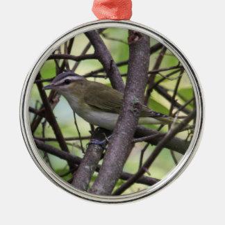 Un especie de ave Rojo-observado Ornamento Para Arbol De Navidad