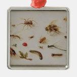 Un estudio de insectos ornamentos de navidad