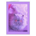Un estudio en gato persa de la lila felicitación