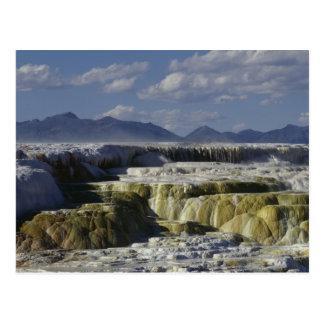 Un flujo mineral en Yellowstone. Tarjetas Postales