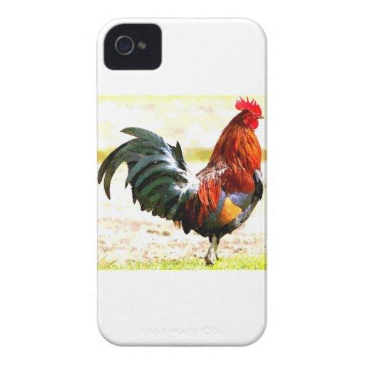 Un gallo iPhone 4 protector