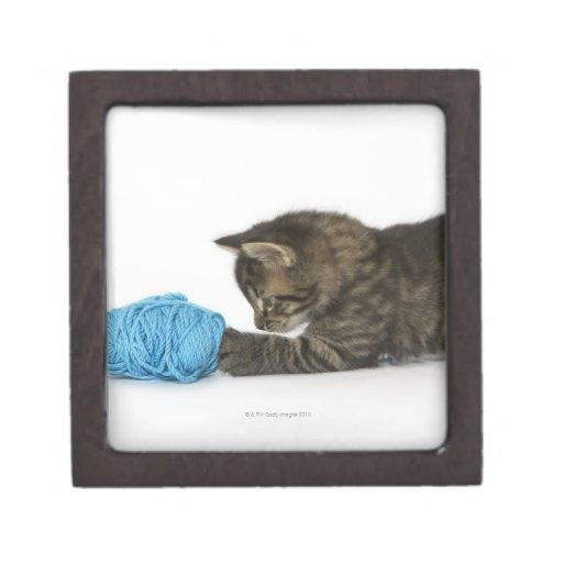 Un gatito joven del Tabby que juega con lanas Caja De Joyas De Calidad
