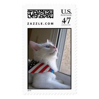 Un gatito patriótico el 4 de julio estampillas