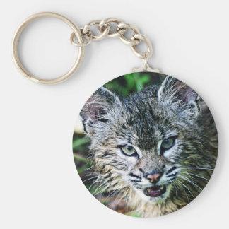 Un gatito sonriente del lince llaveros personalizados