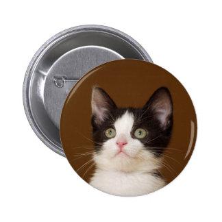 Un gato con el botón del personal pin redondo de 2 pulgadas