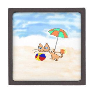 Un gato con los juguetes en la playa cajas de joyas de calidad