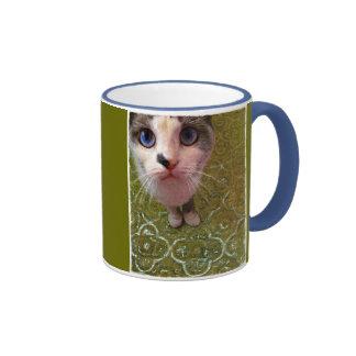 Un gato puede mirar una taza divertida del rey