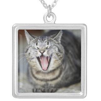 Un gato que bosteza, Suecia Colgante Cuadrado