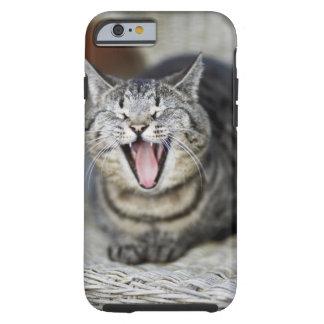 Un gato que bosteza, Suecia Funda De iPhone 6 Tough
