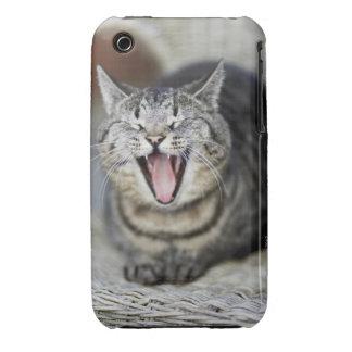 Un gato que bosteza, Suecia Case-Mate iPhone 3 Carcasa