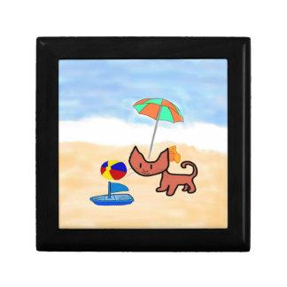 Un gato se divierte el jugar en la playa caja de regalo