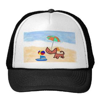 Un gato se divierte el jugar en la playa gorras