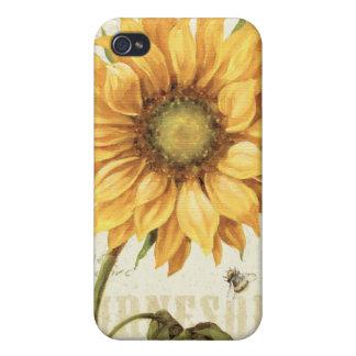 Un girasol amarillo iPhone 4/4S carcasas