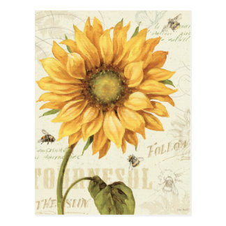 Un girasol amarillo postales