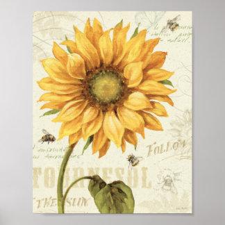 Un girasol amarillo póster