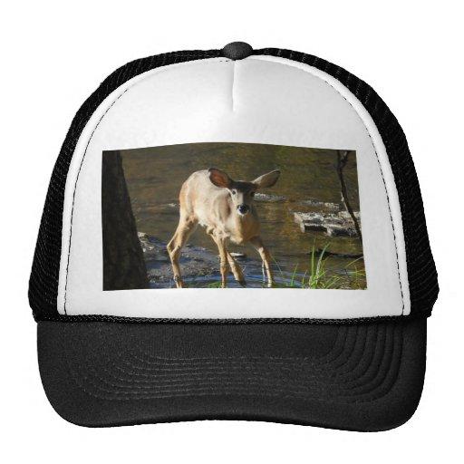 Un gorra de los cazadores