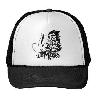 Un gorra del camionero, si usted está en esa clase