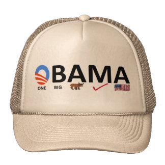 un gorra grande del error