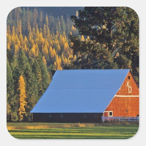 Un granero rojo cultivado construyó en 1911 cerca pegatina cuadradas personalizada