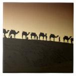 Un grupo de pastores del camello con sus camellos  azulejo cuadrado grande