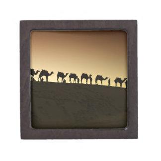 Un grupo de pastores del camello con sus camellos  cajas de joyas de calidad