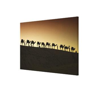 Un grupo de pastores del camello con sus camellos  impresión en lona