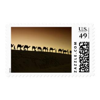 Un grupo de pastores del camello con sus camellos sello postal