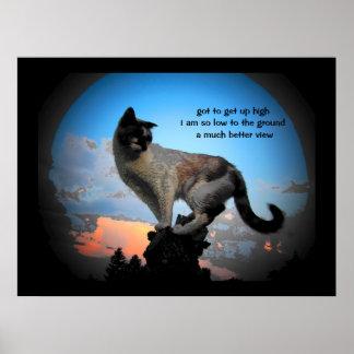 Un Haiku mucho mejor del gato de la visión Póster