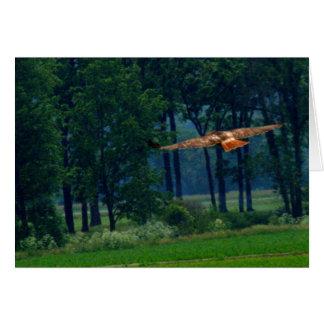 Un halcón atado rojo en vuelo felicitacion