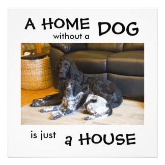 Un hogar sin un perro es apenas una casa - cojinete