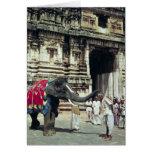 Un hombre que es bendecido por un elefante tarjeta de felicitación
