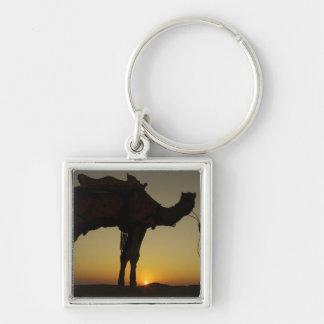 un hombre y su camello silueteados en la puesta de llavero