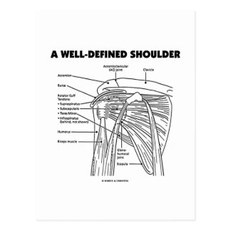 Un hombro bien definido (humor anatómico) tarjeta postal