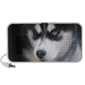 Un husky siberiano hermoso 2 del ojo azul altavoces de viajar