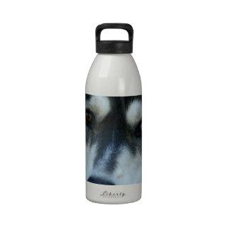 Un husky siberiano hermoso del ojo azul botella de agua