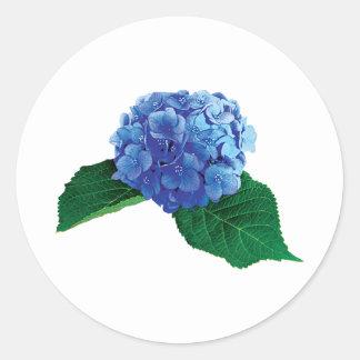Un Hydrangea azul Pegatina Redonda