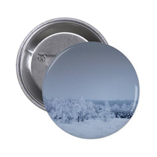Un invierno 17 de Maine Pin