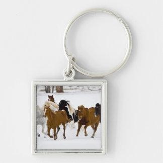 Un invierno escénico de caballos corrientes en llaveros personalizados