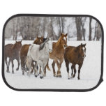 Un invierno escénico de caballos corrientes en los alfombrilla de coche