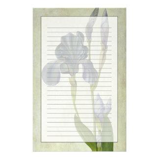Un iris papeleria