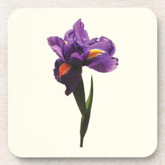 Un iris púrpura posavasos
