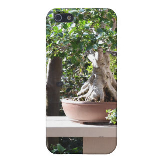 Un jardín del zen iPhone 5 carcasas